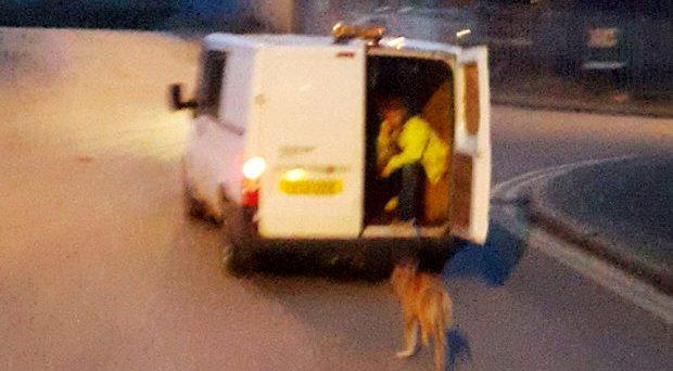 A man sits in the back of a van holding the lead of a dog from a moving van on Fenton Industrial Estate in Stoke-on-Trent Photo: RSPCA/PA