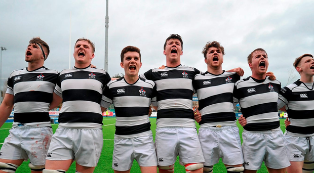 Belvedere College players celebrate after the game