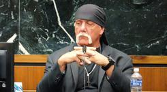 Terry Bollea, known as professional wrestler Hulk Hogan