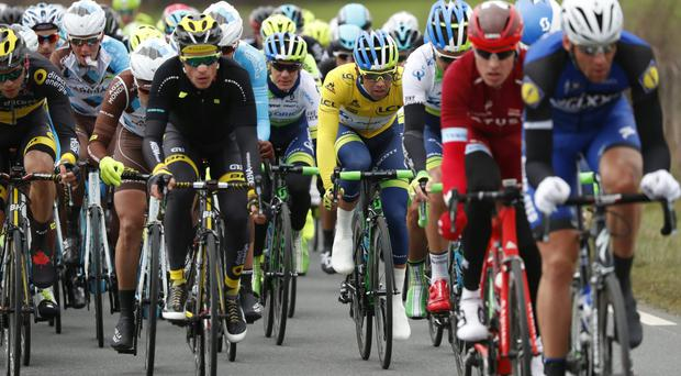Australia's Michael Matthews, centre, wearing the overall leader's yellow jersey rides in the pack during the second stage of the 74th Paris-Nice cycling race between Contres and Commentry yesterday (Getty Images)