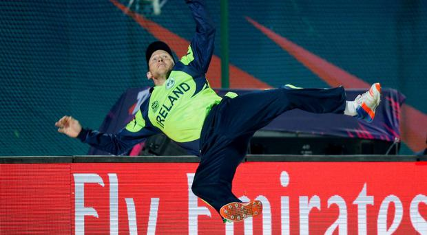 Ireland's Gary Wilson jumps in the air to stop a sixer during the ICC World Twenty20 2016 cricket tournament against Oman