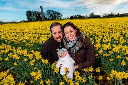Julian, Valerie and baby Robyn Hughes on the daffodil farm in Kells, Co Kilkenny. Photo: Dylan Vaughan