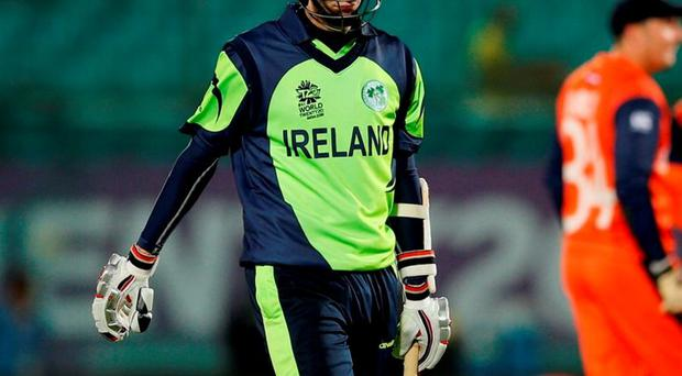 Ireland's George Dockrell. Photo: Tsering Topgyal/AP Photo