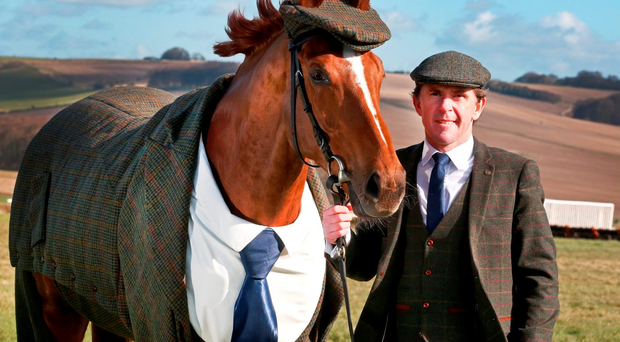 Champion jockey Tony McCoy with veteran racehorse Morestead models the world's first authentic Harris Tweed suit designed for a racing horse, which has been specially commissioned by William Hill to celebrate the opening of this year's Cheltenham Festival. Photo: Joe Pepler/REX/Shutterstock