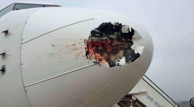 The damaged radome on the EgyptAir Boeing 737-800. Photo: Twitter