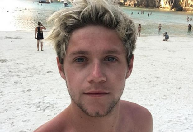 Niall Horan is the most followed Irish person on Twitter. Picture: Instagram