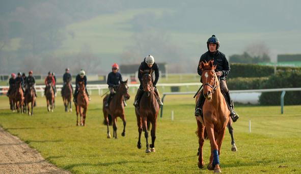 Ruby Walsh and Annie Power lead out Team Mullins on the Cheltenham gallops yesterday. Picture: Seb Daly / SPORTSFILE