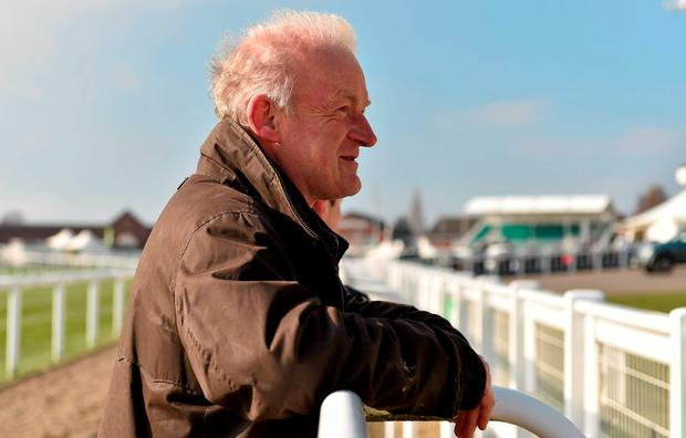 Trainer Willie Mullins at Cheltenham yesterday. Photo: CODY GLENN/SPORTSFILE