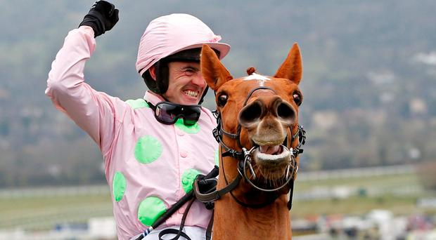 Horse Racing - Cheltenham Festival - Cheltenham Racecourse - 15/3/16 Ruby Walsh celebrates winning the 3.30 Stan James Champion Hurdle Challenge Trophy on Annie Power Action Images via Reuters / Paul Childs Livepic EDITORIAL USE ONLY.