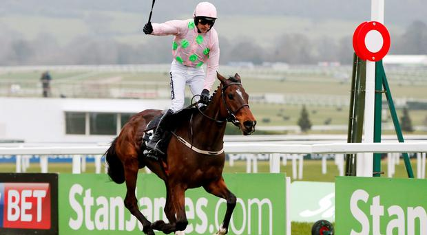 Ruby Walsh celebrates as he and Douvan pass the winning post in yesterday's Racing Post Arkle (Reuters)