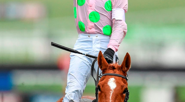 15 March 2016, Ruby Walsh celebrates after winning the Stan James Champion Hurdle Challenge Trophy on Annie Power (SPORTSFILE)