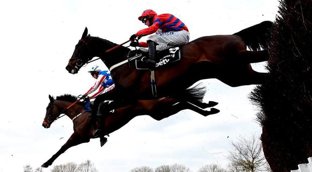 Sprinter Sacre, with Nico de Boinville up, clears the third last on the way to winning the Queen Mother Champion Chase. Photo: Mike Hewitt/Getty Images
