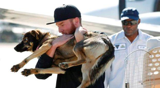 Luna was found on Tuesday on San Clemente Island, a Navy-owned training base 70 miles off San Diego Credit: US Navy