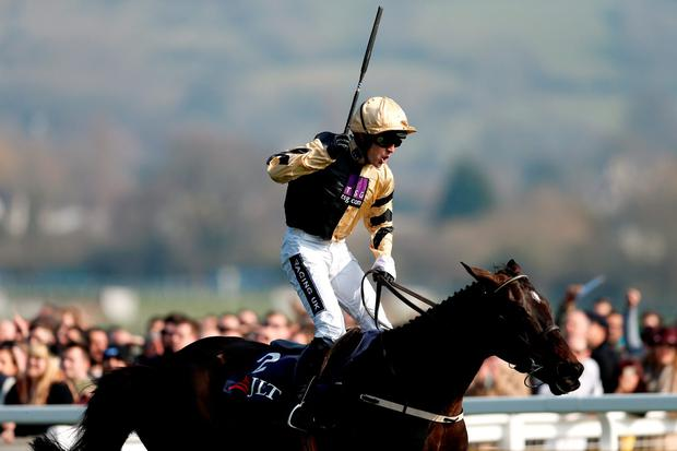 Horse Racing - Cheltenham Festival - Cheltenham Racecourse - 17/3/16 Ruby Walsh celebrates winning the 1.30 JLT Novices Chase on Black Hercules Action Images via Reuters / Andrew Boyers Livepic EDITORIAL USE ONLY.