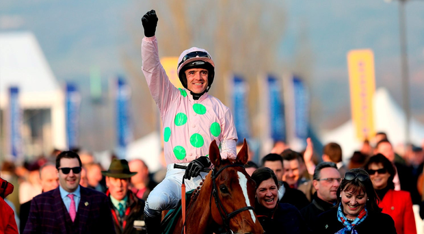Jockey Ruby Walsh celebrates on Limini at the Cheltenham Festival