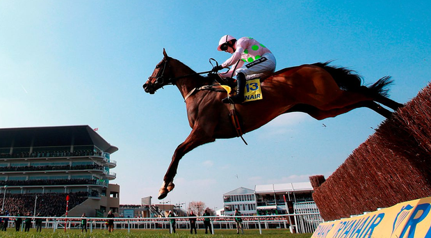 Vautour ridden by jockey Ruby Walsh on the way to winning the Ryanair Chase Photo: David Davies/PA Wire