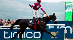Bryan Cooper on Don Cossack celebrates Gold Cup at Cheltenham yesterday Photo: Getty