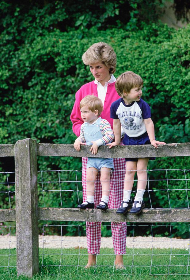 Diana, Princess Of Wales With Her Sons, William And Harry In The Grounds Of Highgrove In Tetbry, Gloucestershire