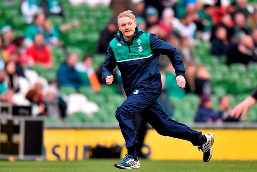 Ireland head coach Joe Schmidt is extremely popular with fans