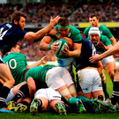 CJ Stander dives over a maul to score Ireland's opening try on Saturday despite the best efforts of Scotland's Tommy Seymour (left) and Ryan Wilson (No 8). Photo: Getty