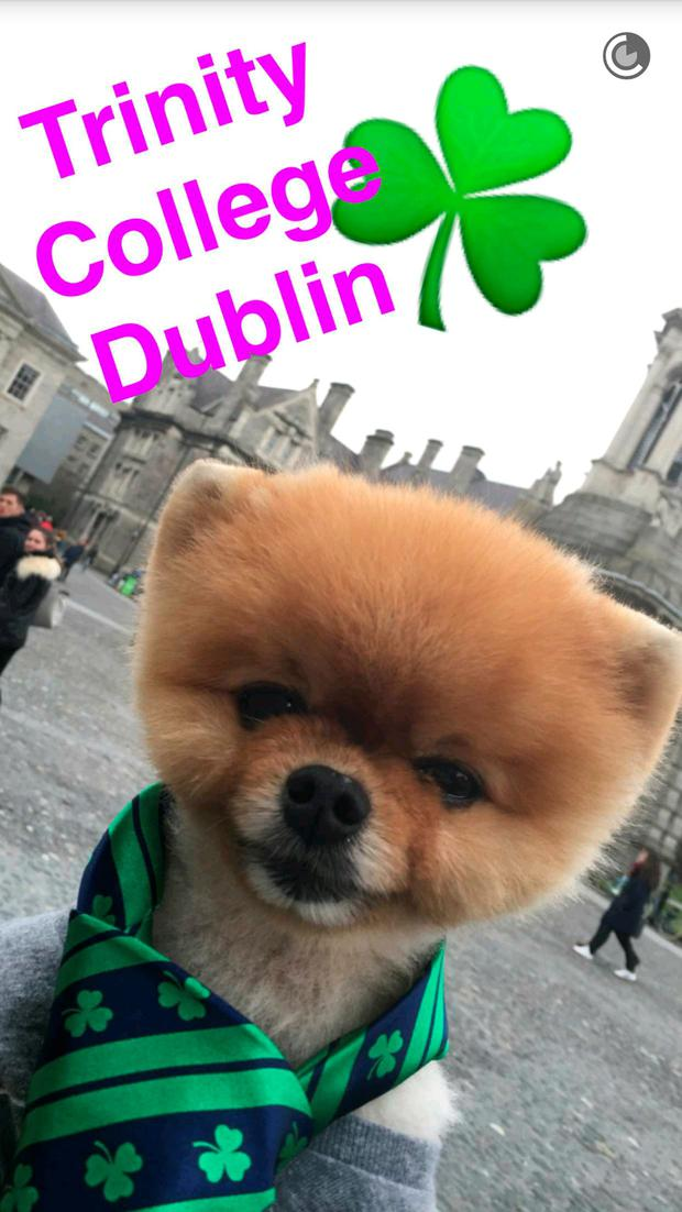 Jiffpom in Trinity College. Photo Credit: Snapchat JiffPom