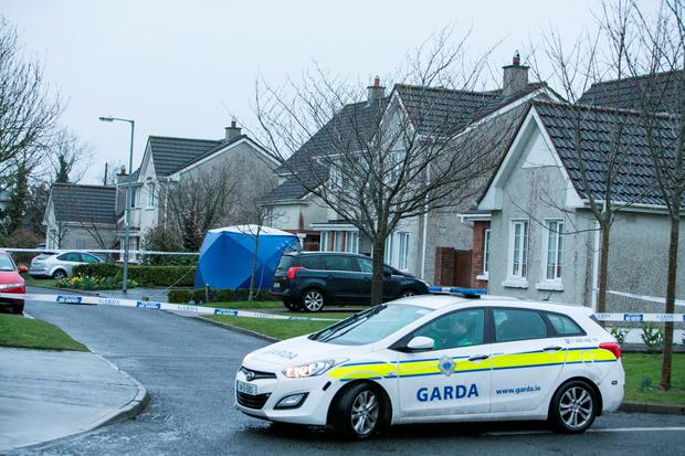 Scene of the fatal shooting of a male in The Old Mill Estate Rathoath Co Meath