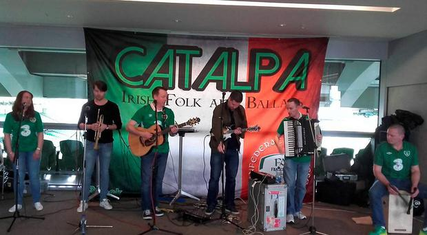Catalpa at the Aviva Stadium today