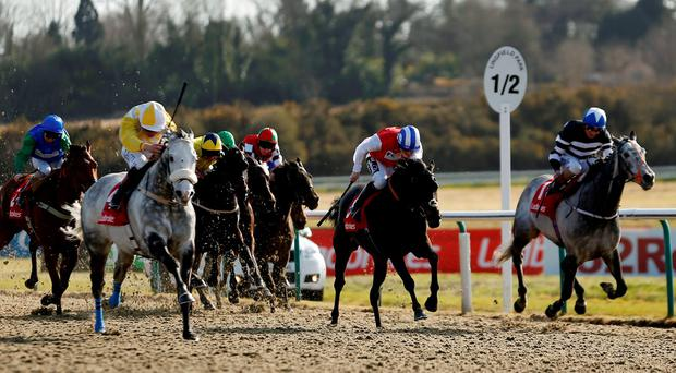 Pat Smullen drives the Tracey Collins-trained grey Captain Joy to victory in yesterday's All-Weather Mile Championship at Lingfield (Paul Harding/PA Wire)