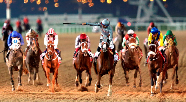 Victor Espinoza rides California Chrome to victory in the Dubai World Cup at Meydan Photo: Getty