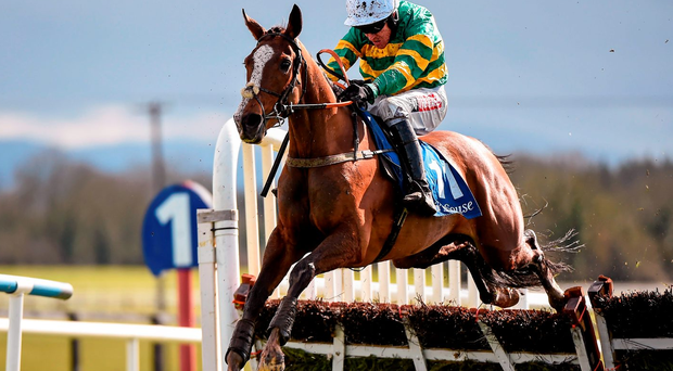 Jer's Girl, with Barry Geraghty up, jumps the last on the way to winning the Mares Novice Hurdle Championship Final yesterday Picture credit: Cody Glenn / SPORTSFILE