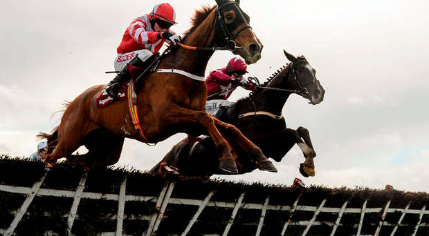 Acapella Bourgeois (left), with Jonathan Burke up, clears the last ahead of Nambour (Bryan Cooper) on the way to winning the Novice Hurdle at Fairyhouse yesterday. Photo: Cody Glenn / SPORTSFILE