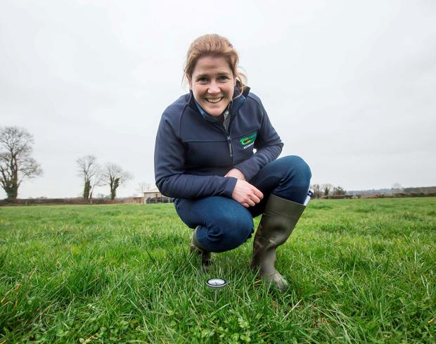 Dr Emer Kennedy from Teagasc Moorepark taking the temperature of the soil during the recent Teagasc spring grazing walk on PJ O'Keeffe's farm at Callan, Co Kilkenny. Photo: Pat Moore.