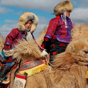 "A child rides a camel during ""Temeenii bayar"", the Camel Festival, in Dalanzadgad, Umnugobi aimag, Mongolia, March 6, 2016. Reuters/B. Rentsendorj"