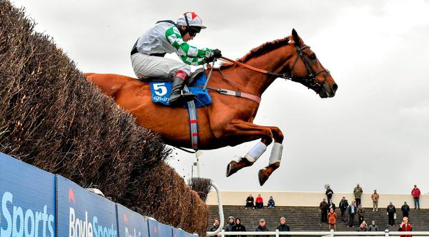 Top Gamble, with Richard Johnson up, jumps the last on their way to winning the Normans Grove Steeplechase. Horse Racing - Fairyhouse Easter Festival. Fairyhouse, Co. Meath. Picture credit: Cody Glenn / SPORTSFILE