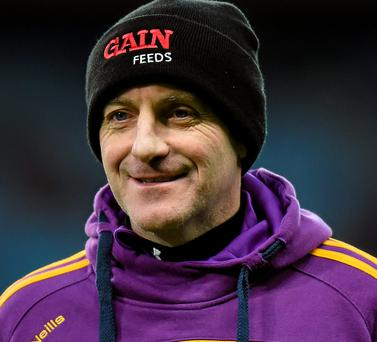 Wexford manager Liam Dunne (SPORTSFILE)