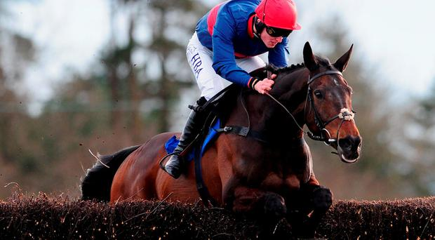 Big Fella Thanks jumps the last to win at Exeter yesterday. Photo: Harry Trump/Getty Images