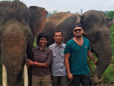 Leonardo DiCaprio posted images of his trip to Sumatra to Instagram and flagged the impact of palm oil plantations on the forest. PIC: Leonardo DiCaprio Instagram