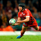 An all-English Champions Cup final is a possibility — but Matt Giteau and Toulon will have other ideas Photo: Stephen McCarthy / SPORTSFILE