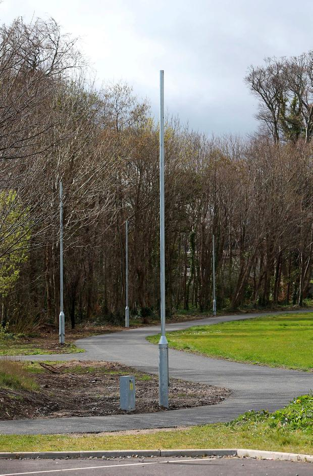 One of the green areas near Shankill Dart station where the attacks happened which has been cut back to be more open. Picture credit; Damien Eagers
