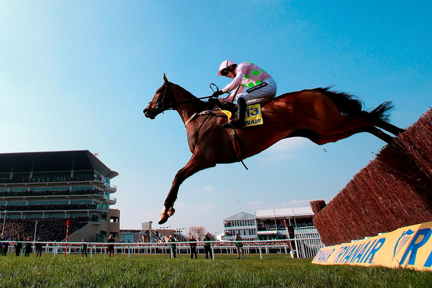 Ruby Walsh, who rode Clarcam in the Manifesto and will be aboard Vautour, pictured, tomorrow, has been confirmed as Boston Bob's rider in Saturday's Crabbie's Grand National Photo: David Davies/PA Wire