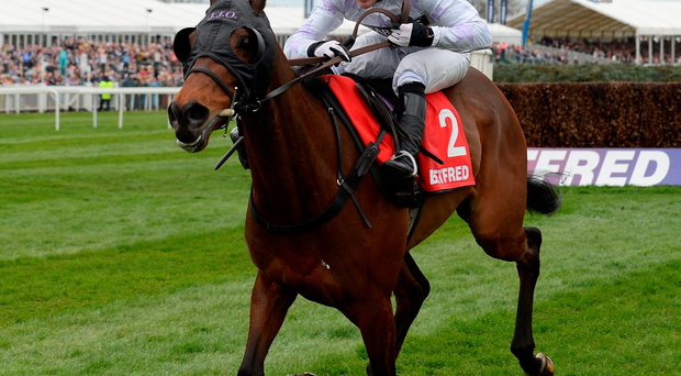 Holywell, seen here with AP McCoy on board, on the way to winning Mildmay Novices Steeple Chase at Aintree in 2014, can land the Grand National today with Richie McLernon in the saddle. Photo: Andrew Yates/AFP/Getty Images