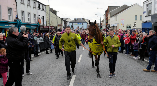 Crabbie's Grand National winner Rule The World during a homecoming event in Mullingar, County Westmeath, Ireland. PRESS ASSOCIATION Photo. Picture date: Sunday April 10, 2016. See PA story RACING National Homecoming. Photo credit should read: PA Wire
