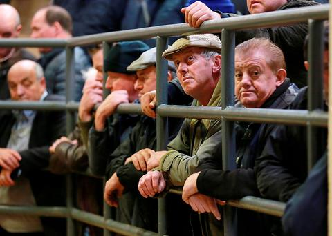 Farmers cast their eyes over the the livestock on sale at the Cahir Mart, Co Tipperary. Photo: Frank Mc Grath.