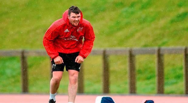 Munster's Peter O'Mahony will not tour South Africa with Ireland this summer. Picture: Diarmuid Greene / SPORTSFILE