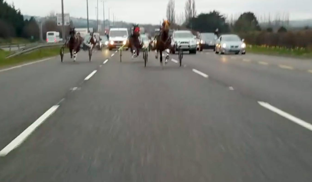 The sulky racing taking place on the N7