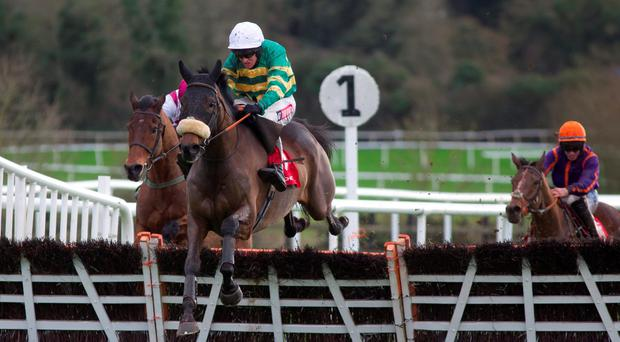 Noble Emperor, with Barry Geraghty up, on the way to winning at Punchestown on New Year's Eve. Photo: Patrick McCann