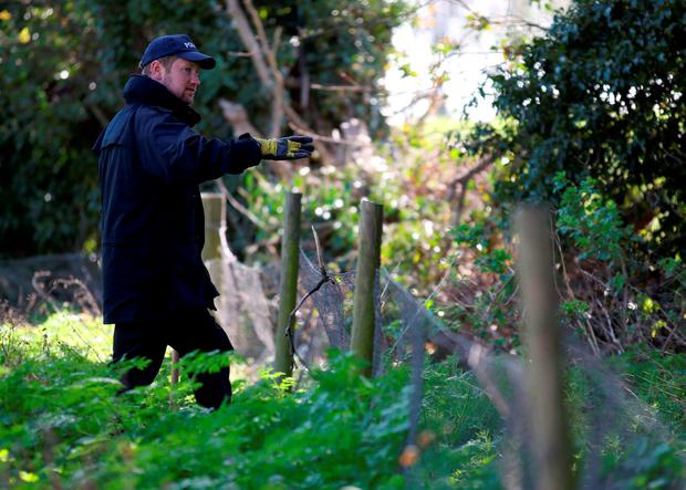 Police officers search a wooded area at Royston Heath in North Hertfordshire, close to the home of missing children's author Helen Bailey Credit: Chris Radburn/PA Wire