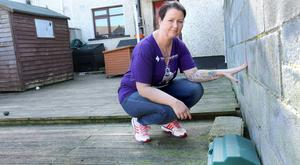 Lisa Kinsella Colman in her back garden pictured beside one of the rat bait boxes. Picture: Gerry Mooney