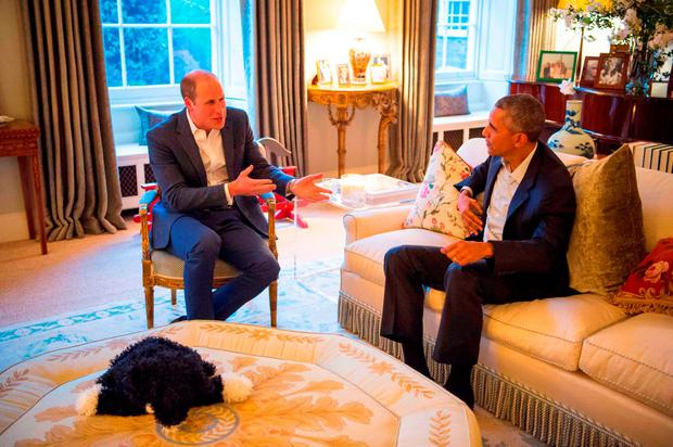 Britain's Prince William, Duke of Cambridge (L) talks with US President Barack Obama (R) in a reception room at Kensington Palace in London, April 22, 2016 where the Obamas were hosted for dinner