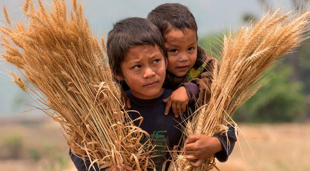 Buddha Bir Tamang (7) and his brother Subhas (2) near their home in a camp at Bogetar in Rasuwa, Nepal. Pic:Mark Condren